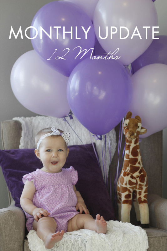 Monthly baby update / 12 Months