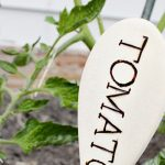 DIY Wooden Spoon Garden Markers