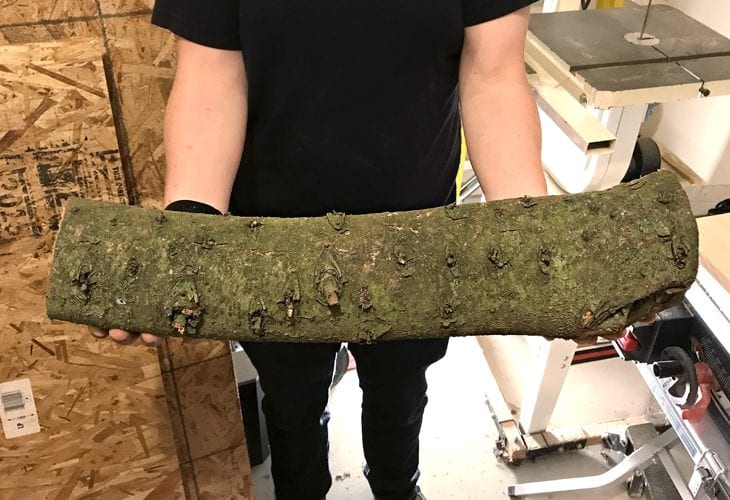 Piece of log for log candle holder image.
