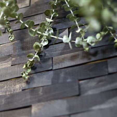 wood-shims-wall-eucalyptus